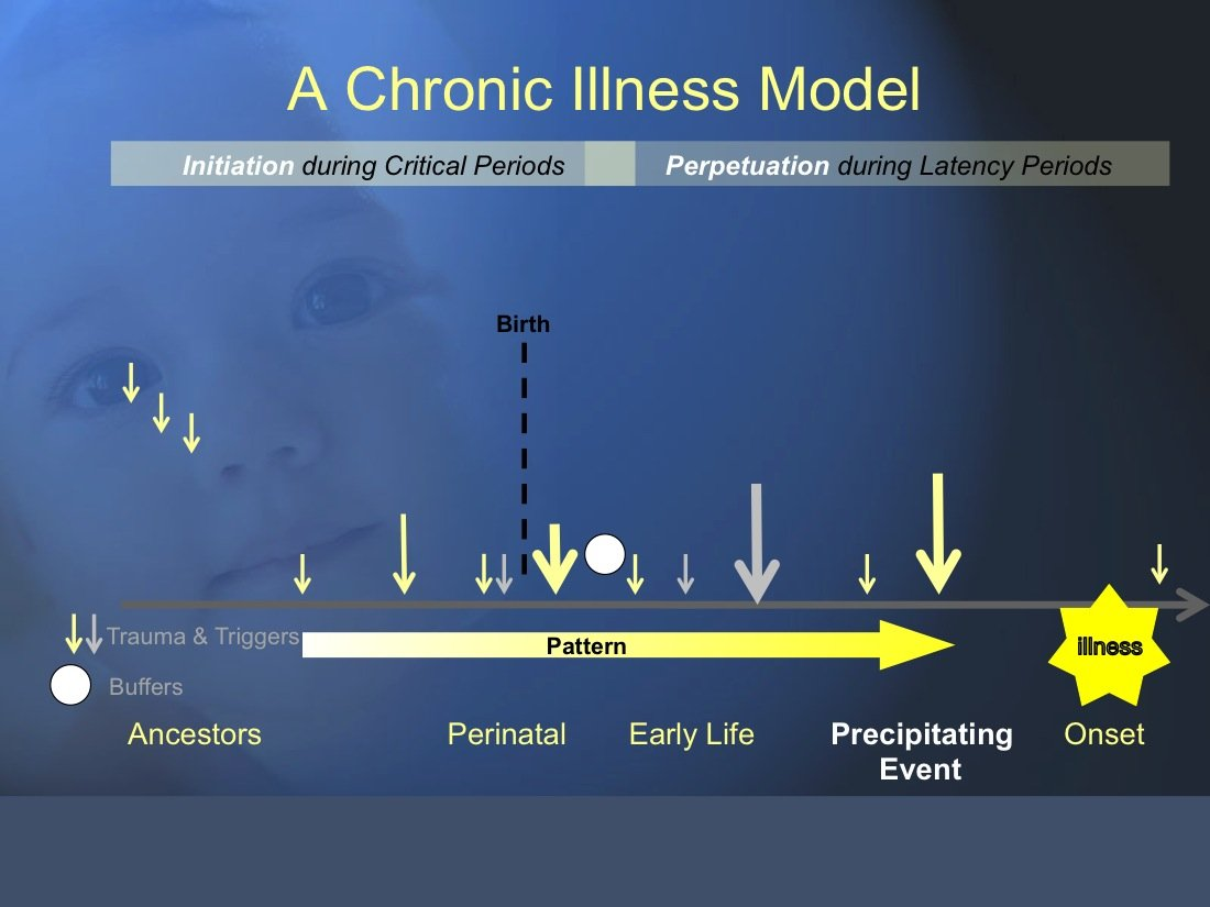 The Chronic Illness Model: 12 An Overview - Tumbling the Stone: a chronic illness blog