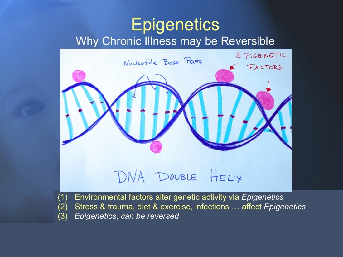 The Chronic Illness Model 10 (Developmental Trauma #5) Epigenetics influence how genes act and are affected by environmental factors such as trauma. Epigenetic factors are Reversible