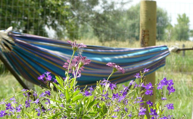 Rest and play and hammocks are tools that can be used in treating chronic illness