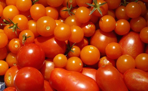Avoiding Night-Shades-such as tomatoes when making dietary changes to treat hemorrhoids