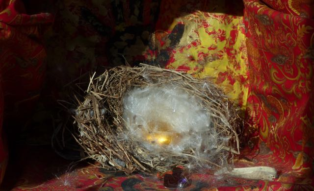 A metaphor of padding the nest - with milkweed.