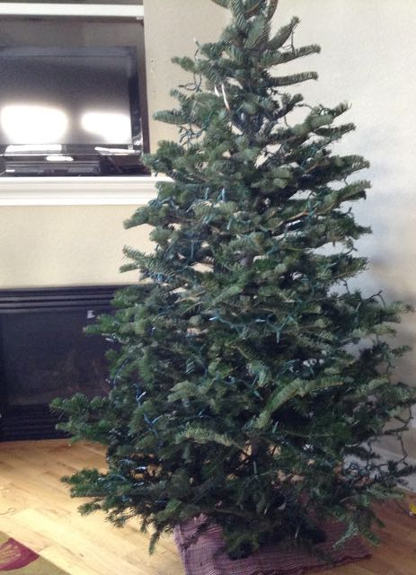 Decorating - even a little - really helps me get into the holiday spirit. Before. We started by enjoying our tree au natural for a few days. A post on Tumbling the stone: a chronic illness blog