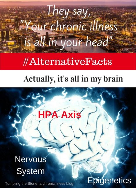 "Share your #ChronicIllnessAlternativeFacts about the falsehoods and judgments you've experienced as a person living with chronic illness who knows differently. ""You must want attention. You have a conversion disorder. It's all in your head…"" Actually, those are #alternative facts. Let's mock the meme."