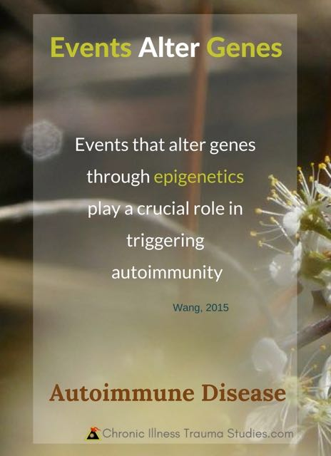 "Life events alter genes through epigenetics and play a crucial role in triggering autoimmune disease ""Wang, 2015"""