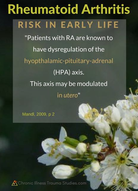 Patients with RA have dysregulation of the HPA axis, which may be altered by experiences in the womb / in utero / before birth